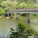 Bridge to TR Island