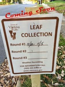 Vienna VA Leaf Collection