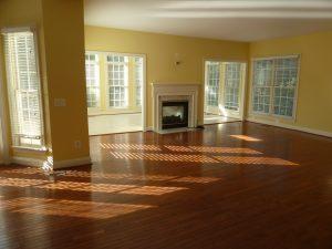 Living Room sunlight