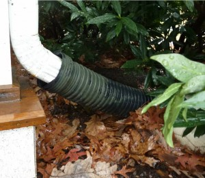 Doug Francis downspout extension