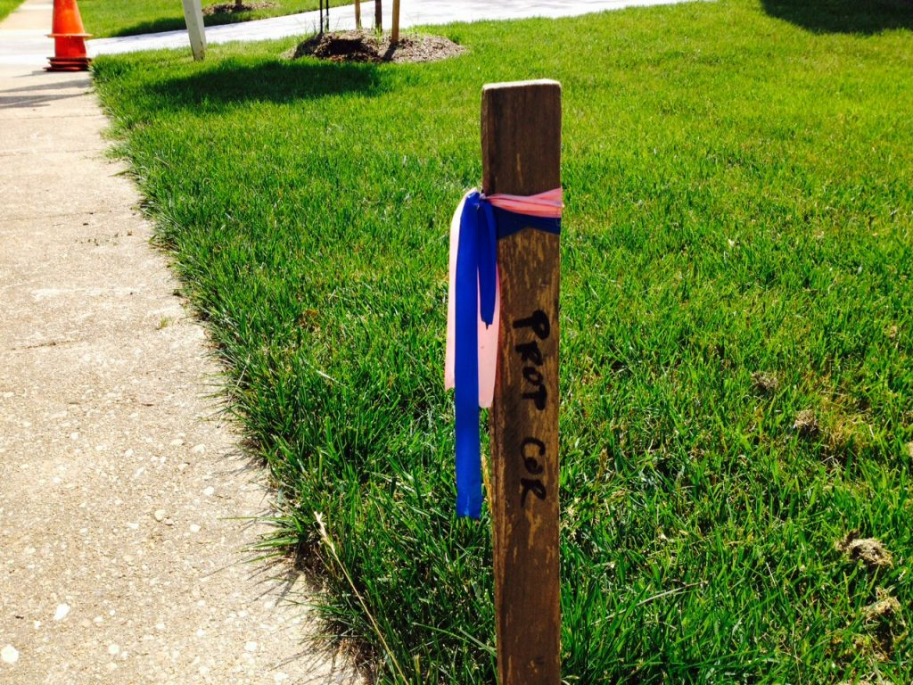 House location survey stake